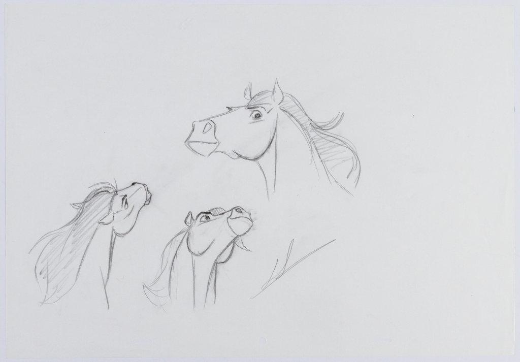 stallion 01